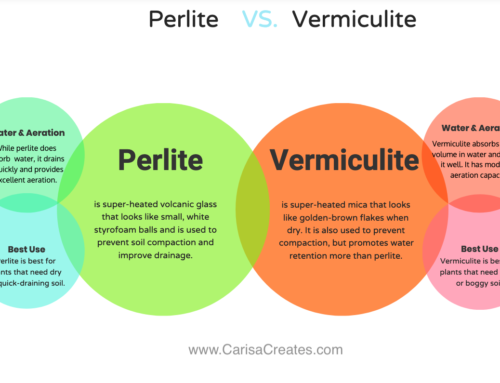 What's the Difference Between Vermiculite and Perlite?
